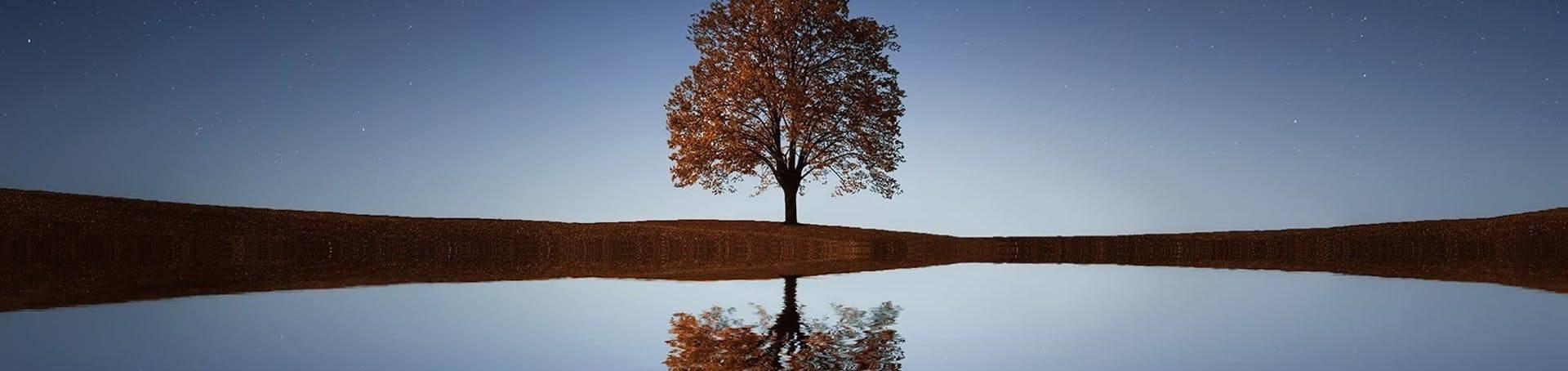 Reflection Principle